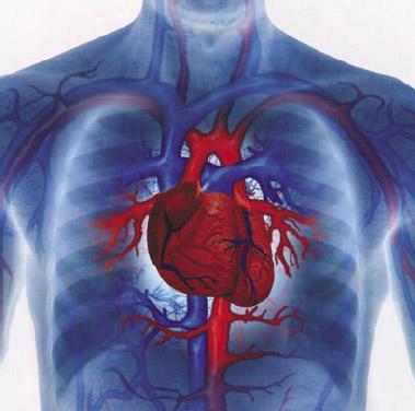 heart-disease_13
