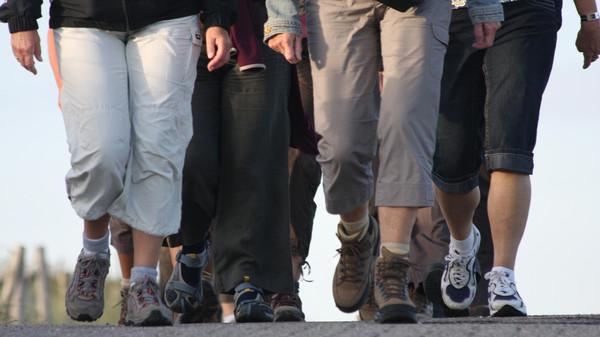 dune walker's legs